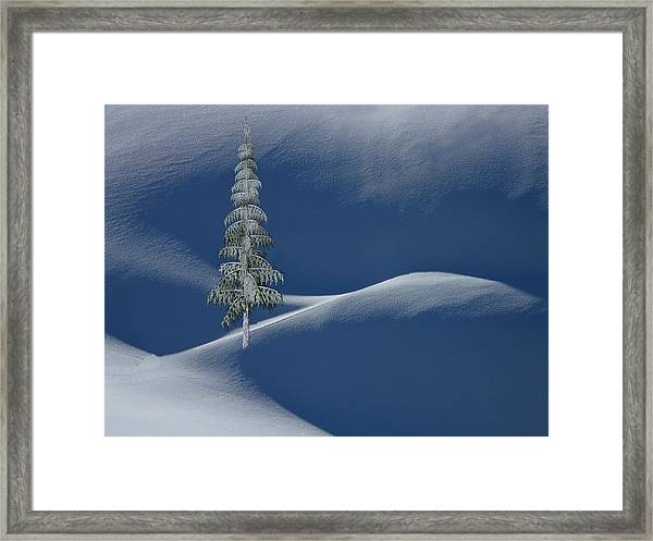 Framed Print featuring the digital art Snow Covered Tree And Mountains Color by David Dehner