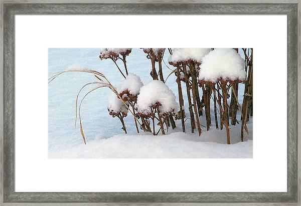 Snow Crowns Framed Print