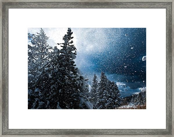Snow Flurry Framed Print