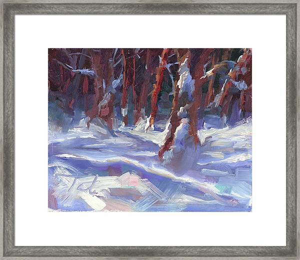 Snow Laden - Winter Snow Covered Trees Framed Print