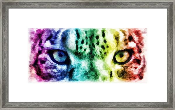 Snow Leopard Eyes 2 Framed Print