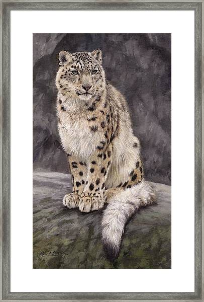 Snow Leopard Sentry Framed Print