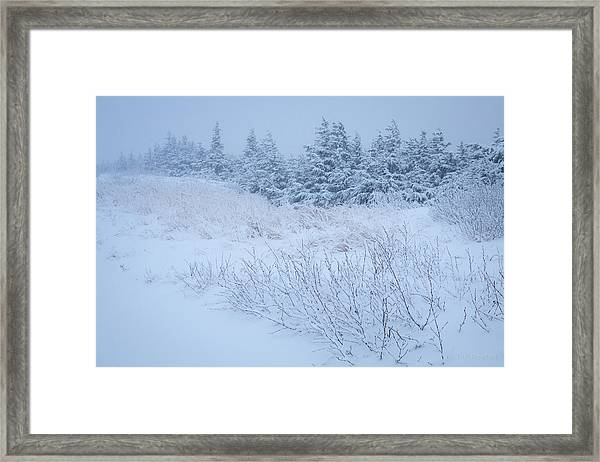 Snow On New Years Eve Framed Print