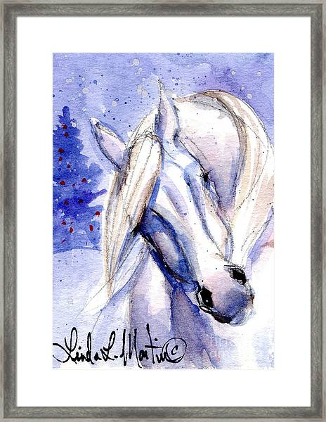 Snow Pony 1 Framed Print