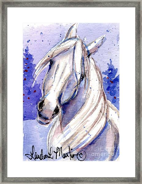 Snow Pony 3 Framed Print