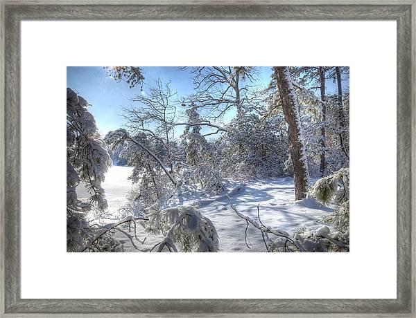 Snow Scene Lake Lenape Framed Print