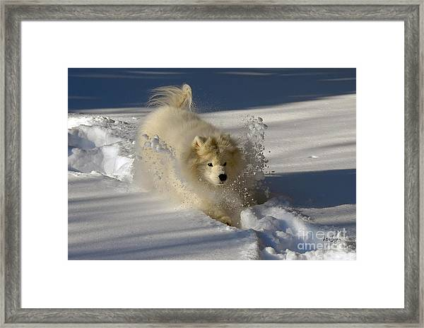 Framed Print featuring the photograph Snowplow by Lois Bryan
