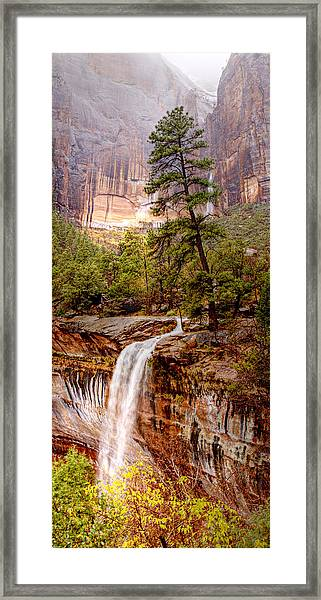 Snowy Day In Zion Framed Print by Darryl Wilkinson