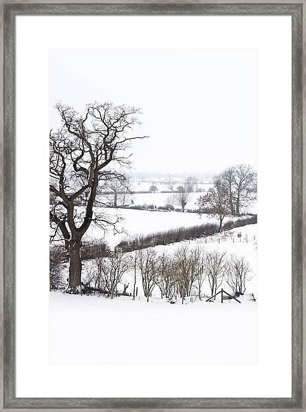 Snowy Fields Framed Print