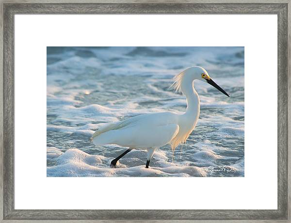Snowy Siesta Key Sunset Framed Print