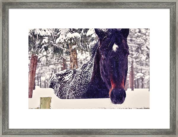 Snowy Spirit Framed Print