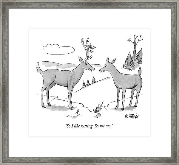 So I Like Rutting.  So Sue Me Framed Print