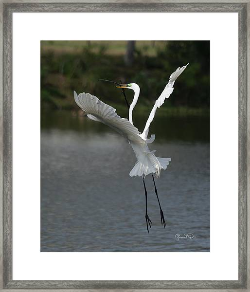 So You Think You Can Dance Framed Print