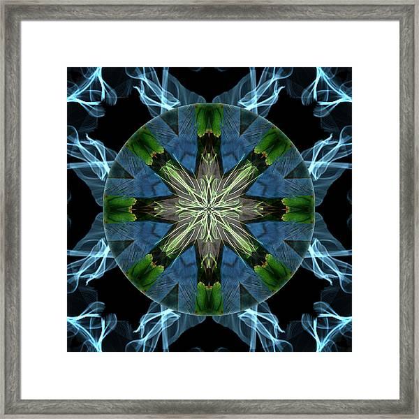 Soaring Spirit Framed Print