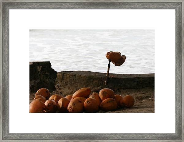 Framed Print featuring the photograph Soft Drinks by Debbie Cundy