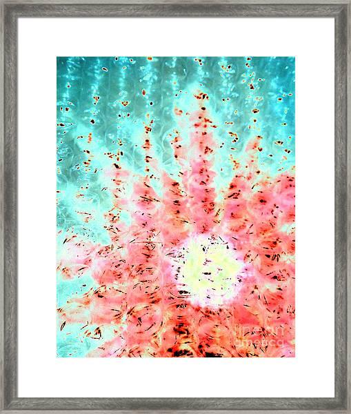 Soft Morning Rain Framed Print