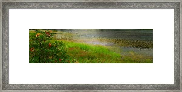 Soft Romance - Textured Framed Print