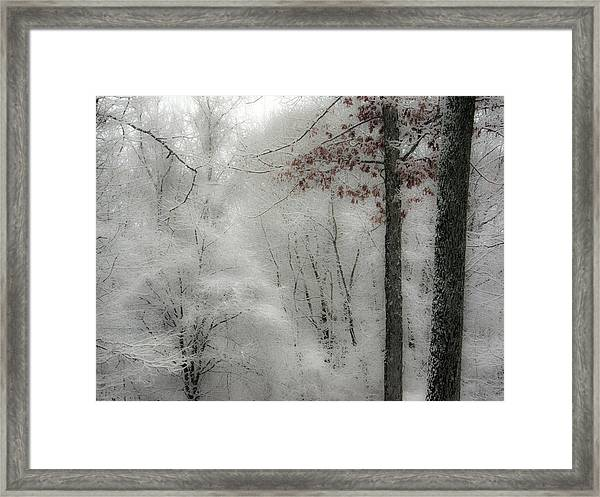 Soft Snow Framed Print