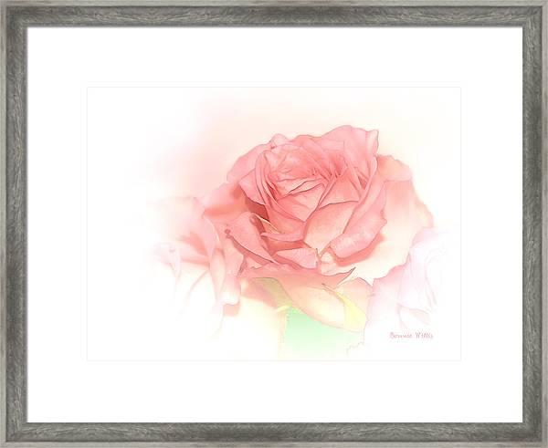 Softly Pink Framed Print