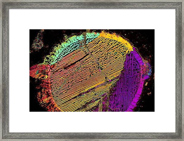 Solar Activity Framed Print