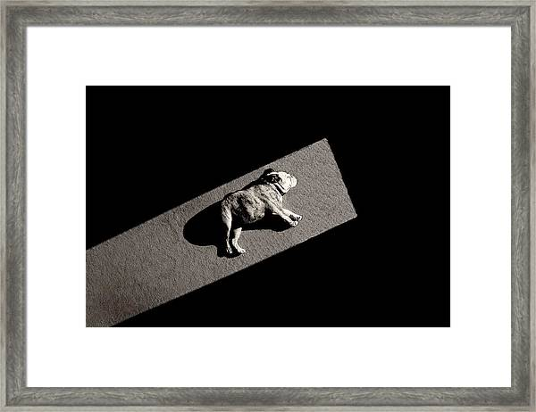 Solar Non-powered Framed Print by Mike Melnotte