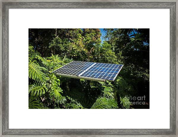Solar Panel In Jungle Framed Print