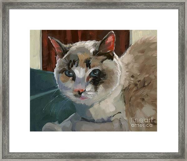 Sold -nelly Logan Framed Print