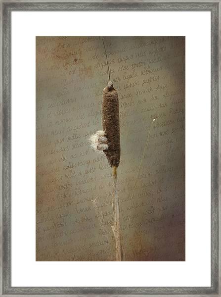 Soliloquy Framed Print