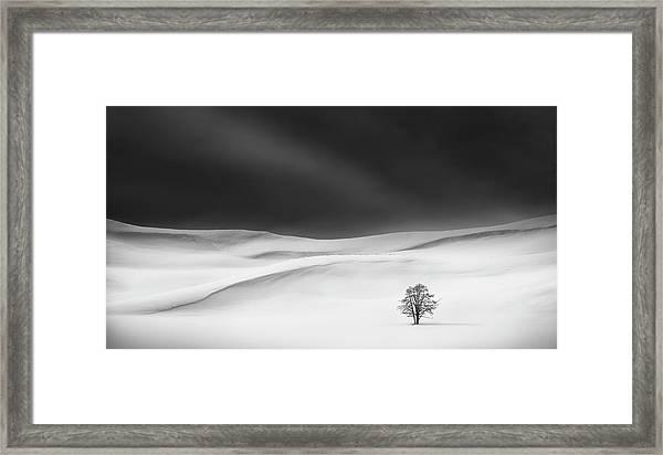 Solitude Framed Print by Huibo Hou