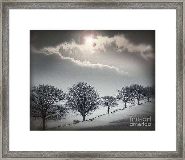 Solitude Of Coldness Framed Print