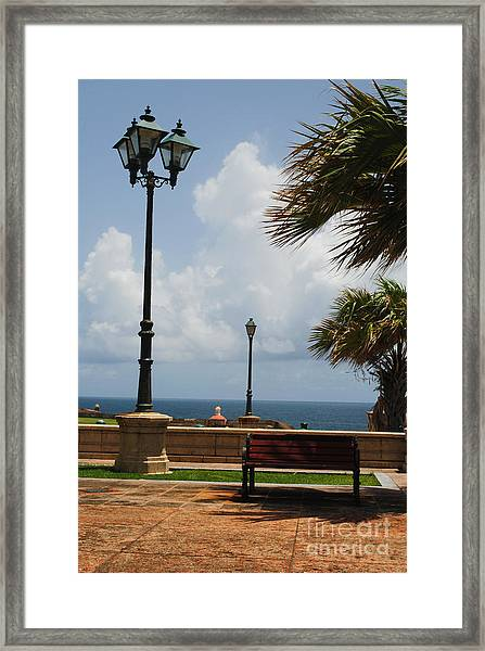 Solo Bench Framed Print