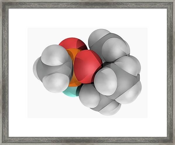 Soman Molecule Framed Print by Laguna Design/science Photo Library