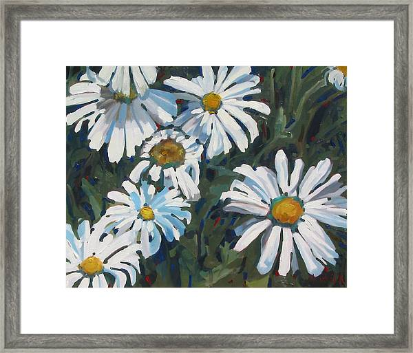 Some Are Daisies Framed Print
