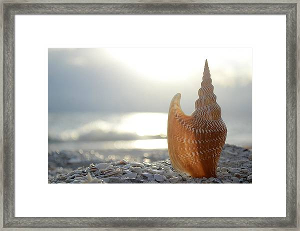 Something Beautiful Remains Framed Print