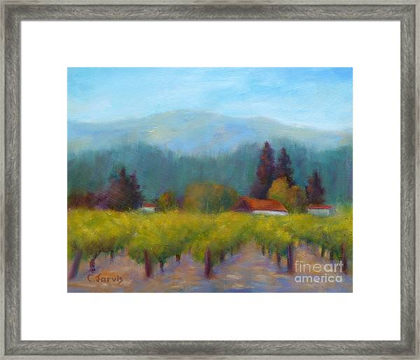 Sonoma Valley View Framed Print
