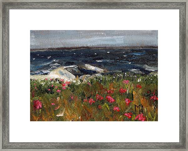 South Cape Beach Framed Print