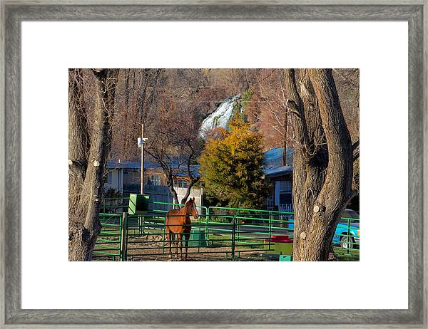 South Central Idaho Life Framed Print