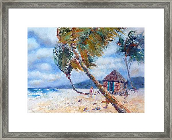 South Pacific Hut Framed Print