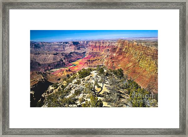 South Rim From The Butte Framed Print