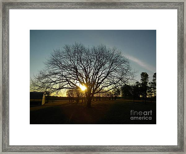 Southern Sunrise Special Framed Print