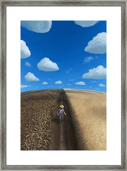 Sow And Reap Framed Print