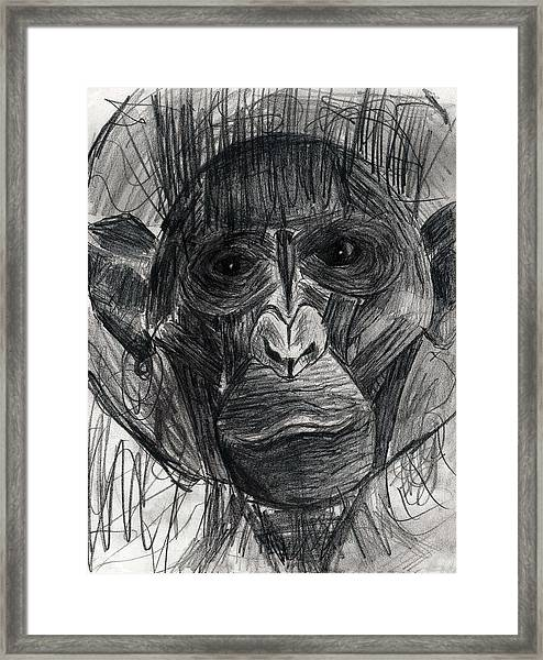 Tearful Space Ape Astronaut With Space Suit Takes It's First Steps On Moon Pencil Drawing Framed Print