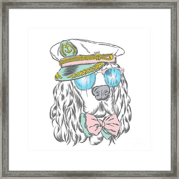 Spaniel In The Captains Cap. Vector Framed Print