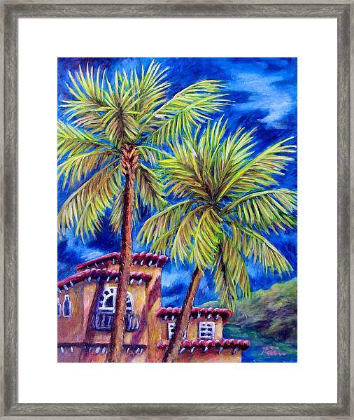 Spanish Palms Framed Print