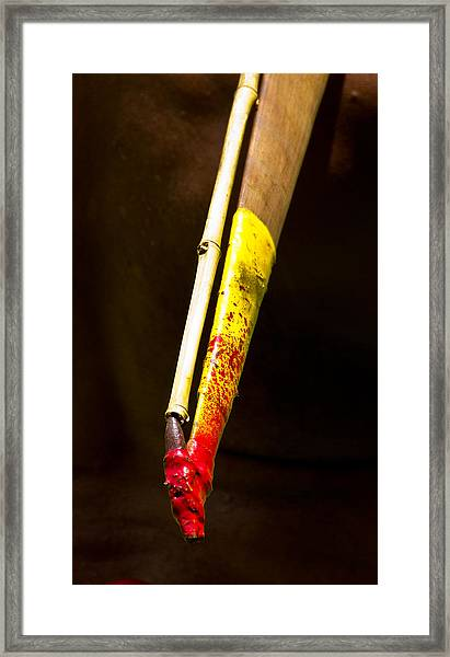Framed Print featuring the photograph Spear Thrower Woomera by Debbie Cundy