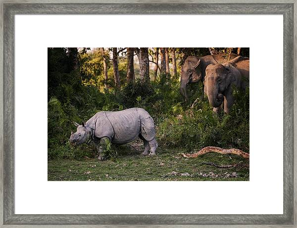 Special Meeting Framed Print