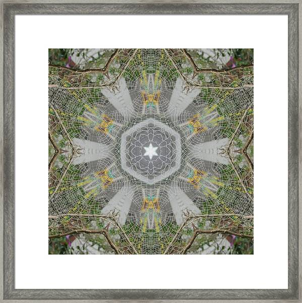 Spider Web Star Magic Framed Print