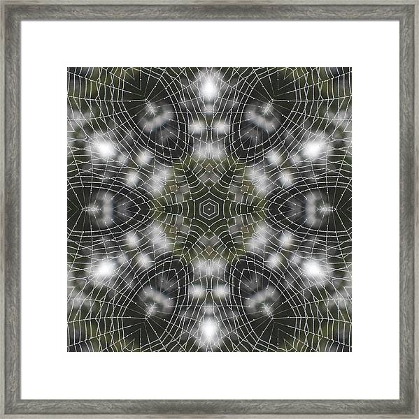 Spiderweb In Black Framed Print