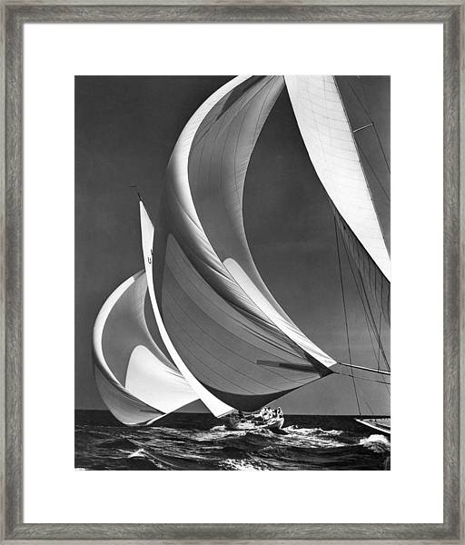 Spinakers On Racing Sailboats Framed Print