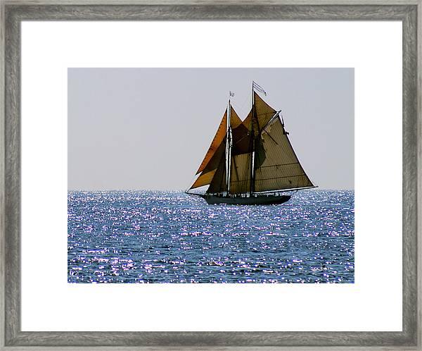 Spirit Of Massachusetts Framed Print
